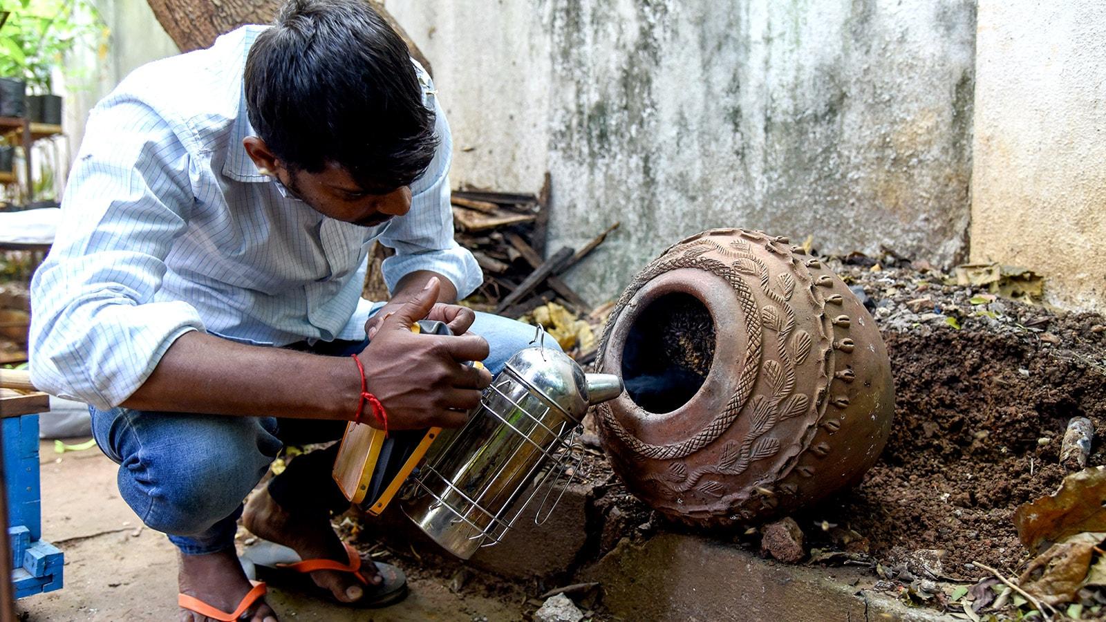 Ruche dans une jarre dans le jardin d'un particulier en Inde. © Getty – Hindustan Times
